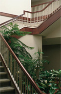 7200hudson_stairs